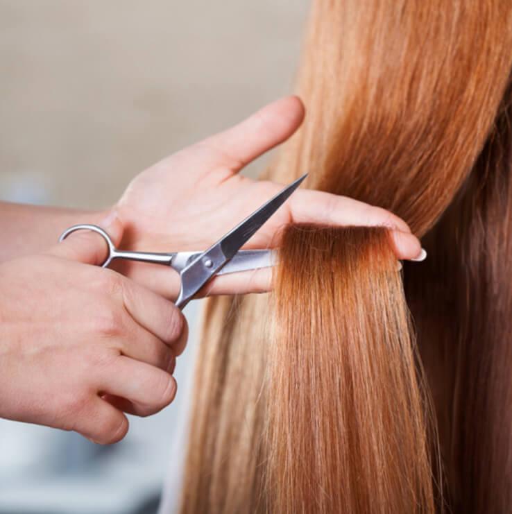 Corte + Hidratação + Ozonioterapia + Escova